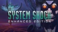 system_shock-3197239