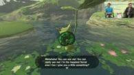 The Legend of Zelda Breath of the Wild Korok
