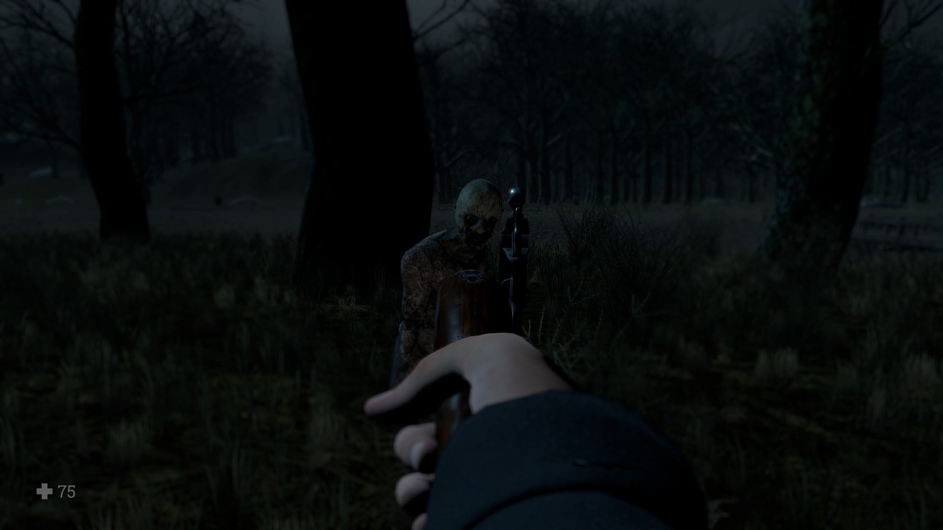 The player aiming at a monster with the flintlock pistol, in Witch Hunt.