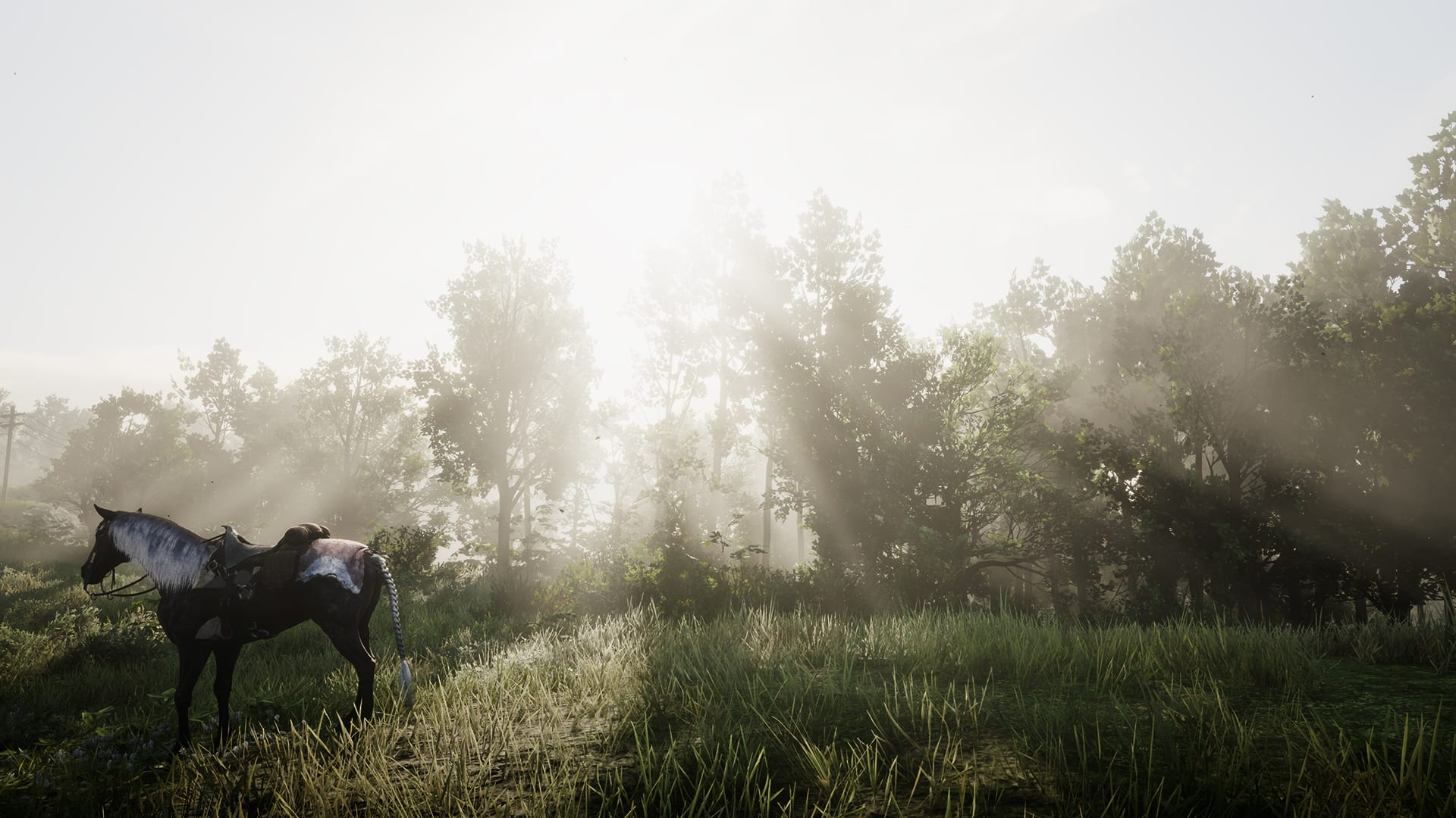 Red Dead Redemption 2 Horse Landscape